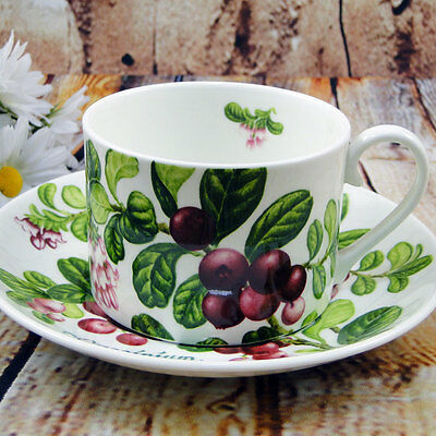 English Fine Bone China Tea Cup & Saucer / Summer Fruit / Lingonberry Cowberry