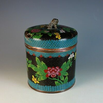 Chinese Cloisonne Antique Early Republic Scholar Humidor Box