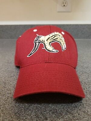 ab8d6dac Vintage South Carolina Gamecocks Zephyr Fitted Hat Cap USC Football Baseball