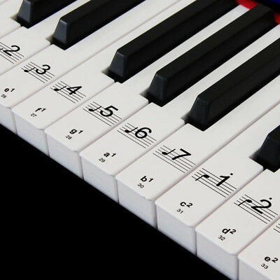 Music Keyboard or Piano Stickers 61 KEY removable white LAMINATED stickers DIY