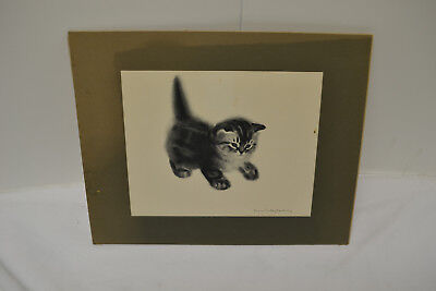 Cat Print CLAIRE TURLAY NEWBERRY 11x14 inches 1955
