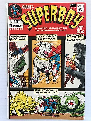 Superboy #174 FN ~ DC Silver Age Comics ~ Giant with Super Animals!