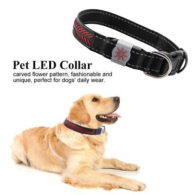 USB Rechargeable LED Luminous Dog Pet Collar Safety Flashing Glow Night Light