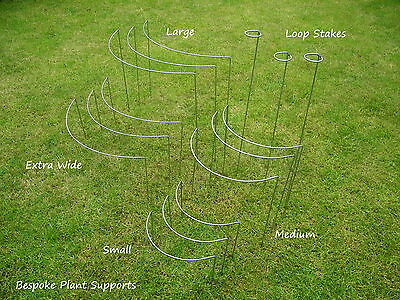 NON RUSTING  (yes no brown rust) Metal Plant Supports and Stakes- 5 packs