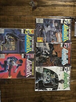 punisher limited series 1-5