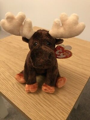 Ty Beanie Babies Zeus - The Moose With Tags Excellent Condition Retired