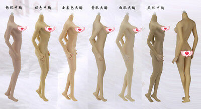 1:6 JIAOU DOLL Super Flexible Middle/Big Bust Female Body Non Dismantle Foot