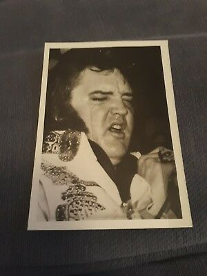 Elvis Presley VINTAGE CANDID PHOTO SENT OUT BY AMERICAN FAN CLUB IN THE 1970'S