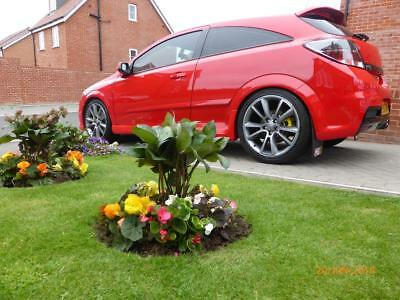 Astra Vxr 2007 Stage 2 Tuned Fresh Mot 95,400 Miles Well Looked After Example