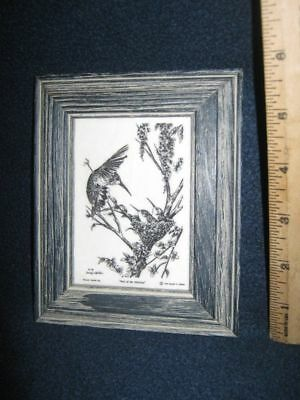 1995 Montana Marble Hummingbird Etching BEST OF THE MORNING Donnie P. Nahlen