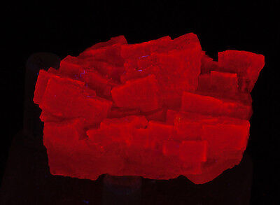 Terriffic Fluorescent Halite From Argentina