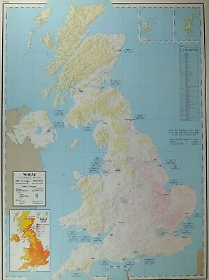 VINTAGE LARGE MAP of BRITAIN WHEAT ACREAGE HOME PRODCTION IMPORTS YIELD