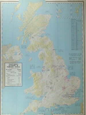 Vintage Large Map Britain Vegetables Flowers Nursery Stock Production Imports