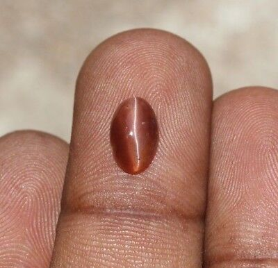 1.35 Ct Natural spectrolite cat's eye brown red oval cabochon loose gemstones
