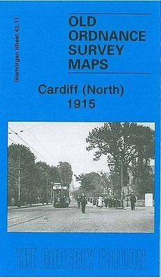 Old Ordnance Survey Map Cardiff North 1915
