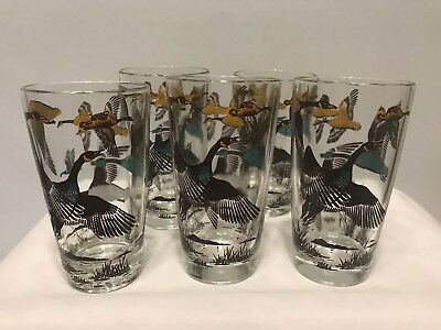 5 Wild Pheasant Hunting Birds Drinking Glasses Cocktail Whiskey Tumblers