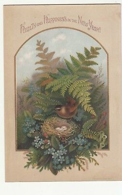 Health and Happiness in New Year Ferns Bird Nest Eggs Absent Vict Card c1880s