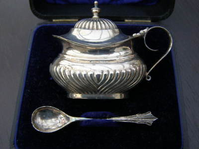 Large Antique Cased Silver Plated Oval Wet Mustard Pot & Spoon Christmas Table