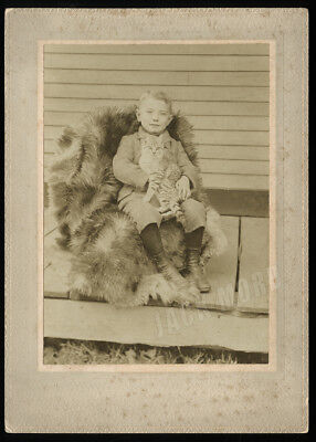 Antique Cabinet Card Photo Happy Little Boy Holding Striped cat