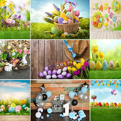 Spring Easter Backdrop Photography Flowers Eggs Wood Floor Portraits Background