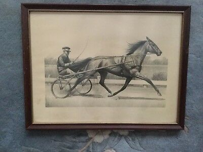 """CW Anderson Horse Print """"Greyhound"""" Champion Trotter Framed"""