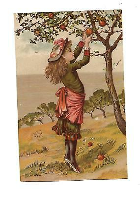 Apple Tree Girl Picking Fruit in Orchard No Advertising Vict Card c1880s