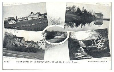 Early 1900s Connecticut Agricultural College, Storrs, CT Multiview Postcard