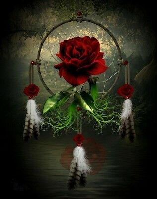 Native American Dream Catcher Rose Beautiful 8.5x11 Matte Art