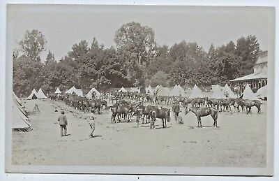C.1910 Rp Postcard Lord Kitchener's Visit  Military Camp Adelaide S.a  V48