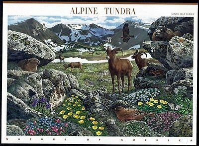 2007 ALPINE TUNDRA Nature of America Series 9th: Mint Sheet 10 41¢ Stamps #4198