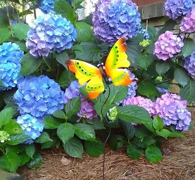 Metal Butterfly Garden Stake Rustic Multi Colored Butterfly Indoor Outdoor Use