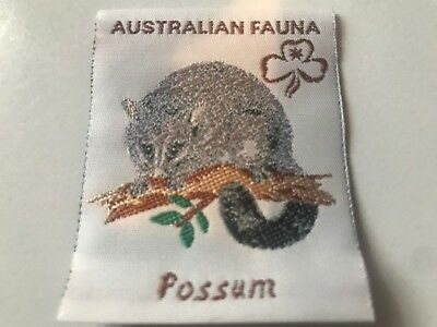 Girl Guides / Scouts Possum