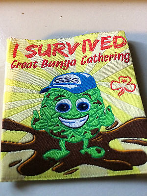 Girl Guides / Scouts I survived GBG
