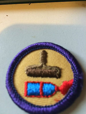 Girl Guides / Scouts Interest 8
