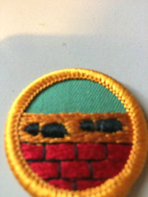 Girl Guides / Scouts Interest 7