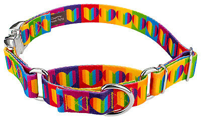 Country Brook Petz® Rainbow Hearts Martingale with Premium Buckle Dog Collar