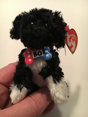eb7a725ecd9 TY BEANIE BABY - BO the Portuguese Water Dog (Key Clip - Blue Clip ...