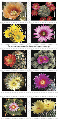 *NEW* 2019 Cactus Flowers Booklet (Block of 10) 2019 Mint NH