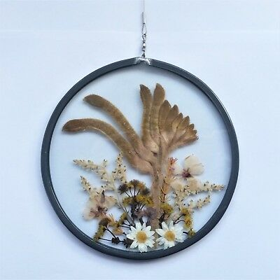 Vintage Floral Pressed Dried Flower Decorative Wall Hanging Art Round Glass Boho