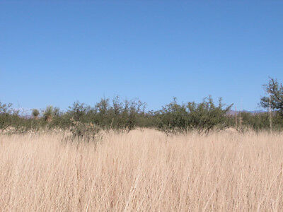 0.25 Acres +/- Your Private Getaway 40 Miles From Tuscon. INVESTMENT PROPERTY!