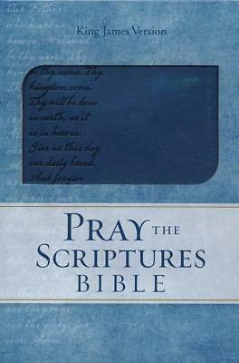 Pray the Scriptures Bible, KJV, Lord's Prayer Design, Leathersoft Navy, 2017