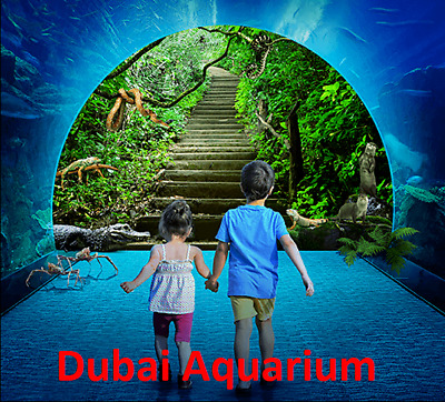 Dubai Aquarium Explorer Experience - Entertainer Dubai'19 bogof voucher