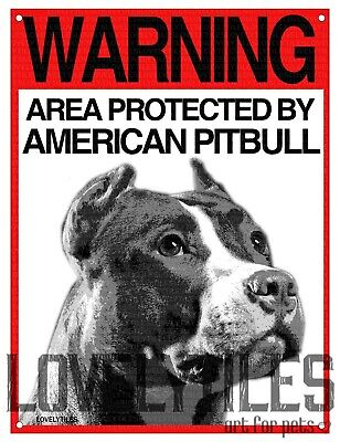 AMERICAN PITBULL cartello cane ATTENTI AL CANE WARNING AREA PROTECTED BY