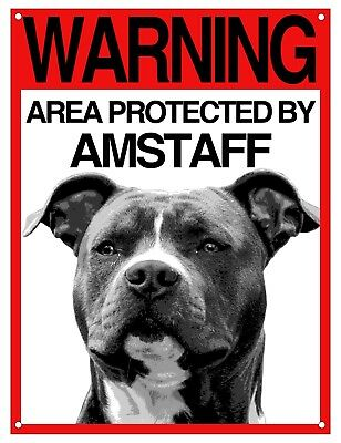 AMSTAFF cartello cane ATTENTI AL CANE WARNING AREA PROTECTED BY