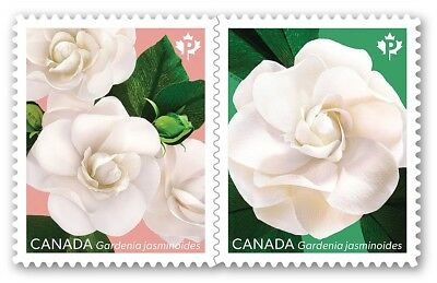 GARDENIA flower = Pair of booklet stamps  = MNH-VF Canada 2019
