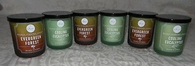 Lot 6 DW Home Hand Poured Candles Cooling Eucalyptus & Evergreen Forest NEW