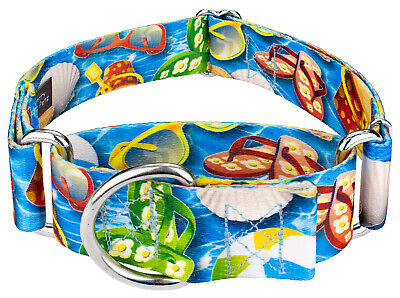 Country Brook Petz™ 1 1/2 Inch Martingale Dog Collar - Summer Breeze Collection