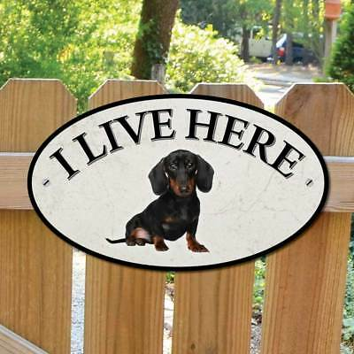 DACHSHUND Dog Gate Sign, I Live Here Sign, Robust Outdoor Dog Gate Plaque