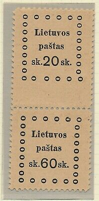 Lithuania. 1919. Pair with 2 different values - MNH #4