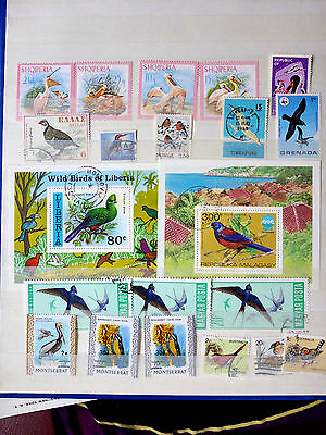 Worldwide Unsorted Topical Bird Stamp Collection All Different (H)